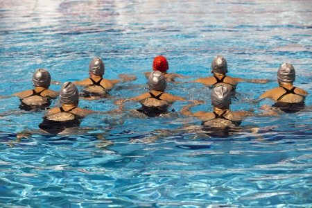 synchronized swimmers  photo