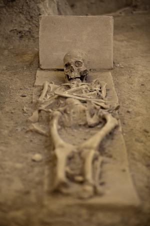 huesos humanos: restos esqueléticos Foto de archivo