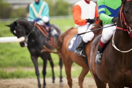 horse racing Фото со стока
