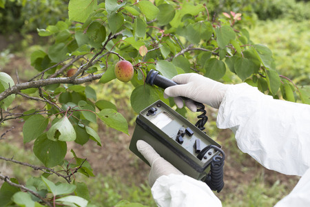 radioactive: Measuring radiation levels of apricot