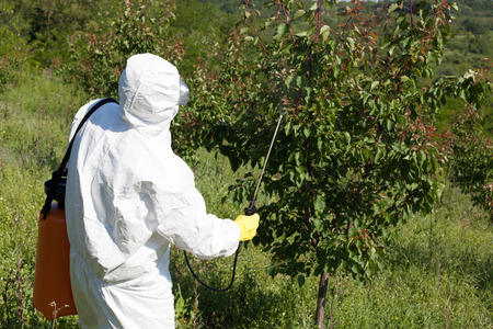 non cultivated: Pesticide spraying