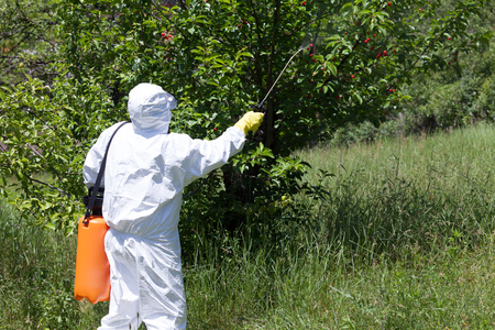 spraying: Spraying a fruit orchard