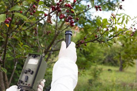 radiacion: Medición de los niveles de radiación de árboles frutales Foto de archivo