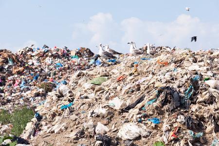 landfill site: Landfill site. Garbage dump. Stock Photo