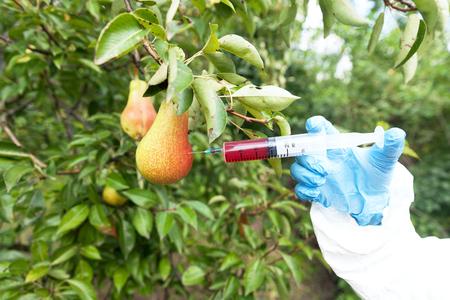 Genetically modified fruit 写真素材