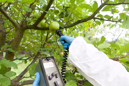 Measuring radiation levels of the fruit