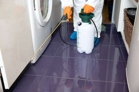 Pest control worker spraying insecticide with sprayer in the kitchen