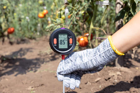 Measuring soil pH, environmental illumination and humidity in a vegetable garden