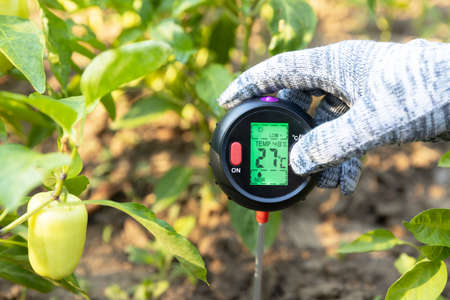 Measuring temperature, moisture content of the soil, environmental humidity and illumination in a vegetable garden