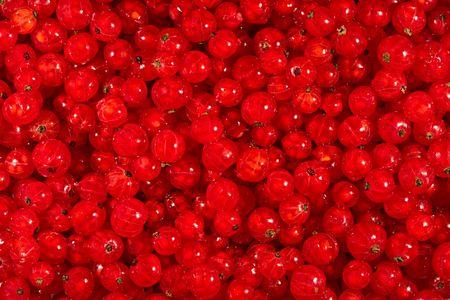 glistening: Reci�n elegido, de color rojo brillante de Corinto