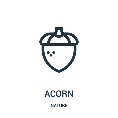 acorn icon vector from nature collection. Thin line acorn outline icon vector illustration. Linear symbol for use on web and mobile apps, logo, print media.