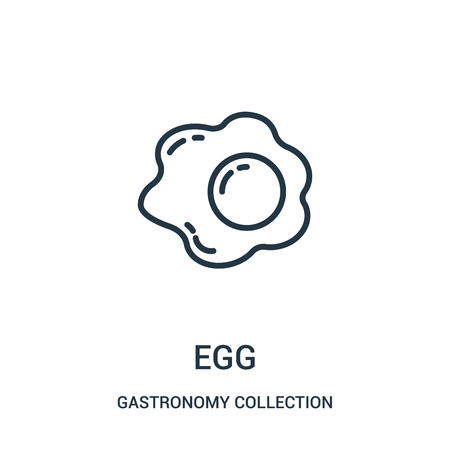 egg icon vector from gastronomy collection collection. Thin line egg outline icon vector illustration. Linear symbol for use on web and mobile apps, logo, print media.