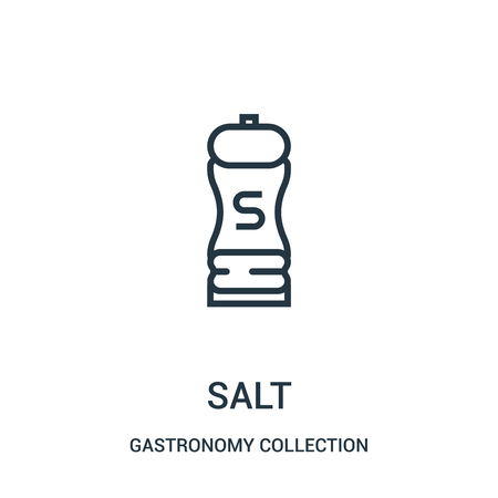 salt icon vector from gastronomy collection collection. Thin line salt outline icon vector illustration. Linear symbol for use on web and mobile apps, logo, print media.