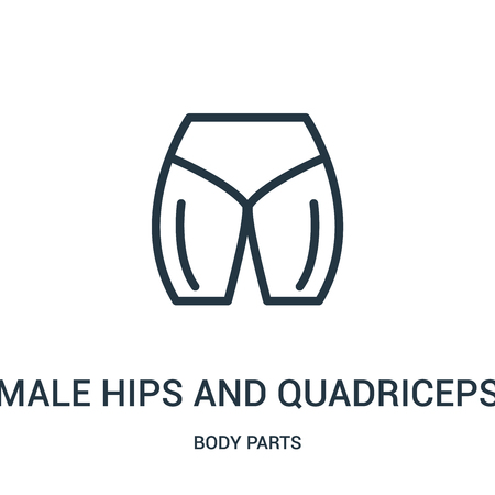 male hips and quadriceps icon vector from body parts collection. Thin line male hips and quadriceps outline icon vector illustration. Linear symbol for use on web and mobile apps, logo, print media. Illustration