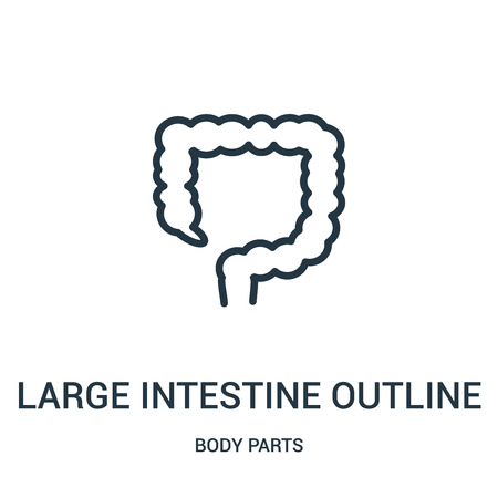 large intestine outline icon vector from body parts collection. Thin line large intestine outline outline icon vector illustration. Linear symbol for use on web and mobile apps, logo, print media.