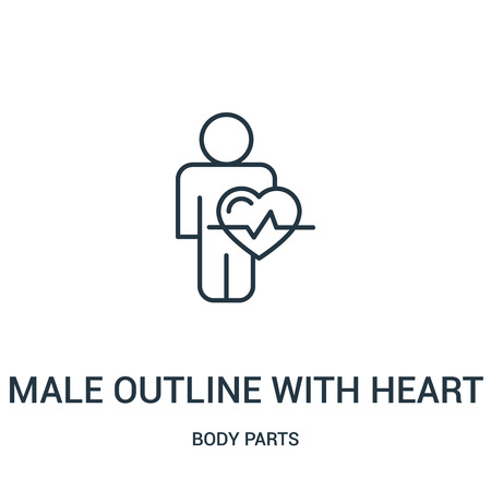 male outline with heart shape and lifeline icon vector from body parts collection. Thin line male outline with heart shape and lifeline outline icon vector illustration. Linear symbol for use on web