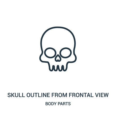 skull outline from frontal view icon vector from body parts collection. Thin line skull outline from frontal view outline icon vector illustration. Linear symbol for use on web and mobile apps, logo,