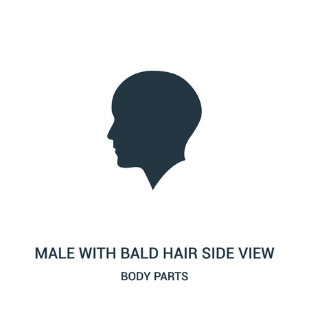male with bald hair side view icon vector from body parts collection. Thin line male with bald hair side view outline icon vector illustration. Linear symbol for use on web and mobile apps, logo,