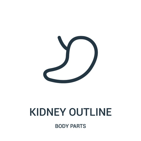 kidney outline icon vector from body parts collection. Thin line kidney outline outline icon vector illustration. Linear symbol for use on web and mobile apps, logo, print media. Ilustração
