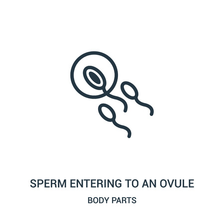 sperm entering to an ovule icon vector from body parts collection. Thin line sperm entering to an ovule outline icon vector illustration. Linear symbol for use on web and mobile apps, logo, print
