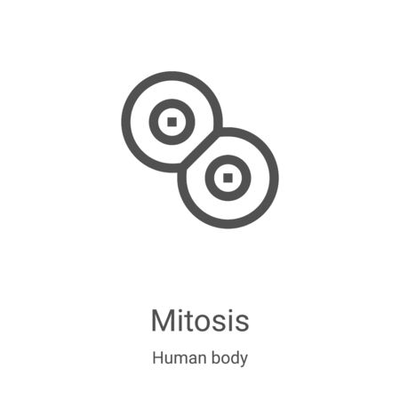 mitosis icon vector from human body collection. Thin line mitosis outline icon vector illustration. Linear symbol for use on web and mobile apps, logo, print media