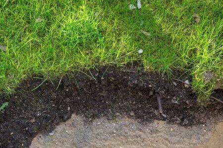 Soil layer in the garden Archivio Fotografico