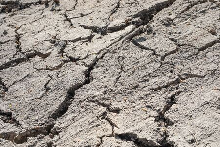 Texture of dried out soil Zdjęcie Seryjne