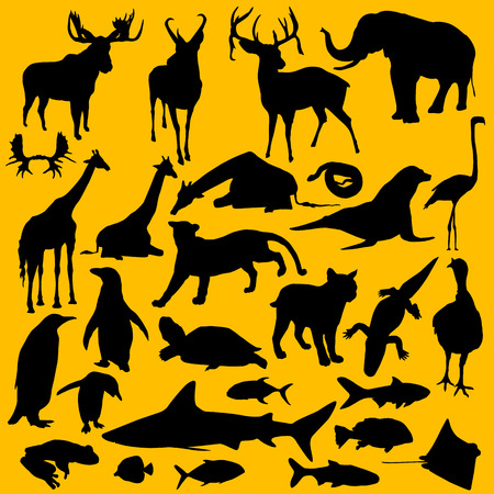 A collection of 28 different silhouettes of animals  Vector