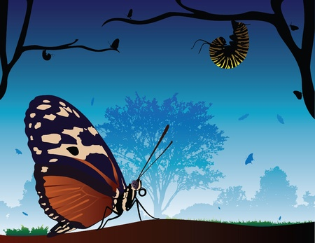 An illustration of a large detailed butterfly in its beautiful environment. Vector