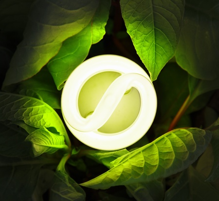 fluorescent: Eco lightbulb