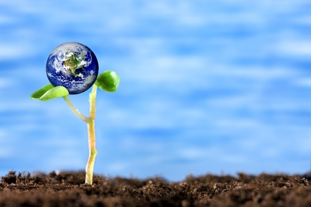 soil conservation: Eco Earth Stock Photo