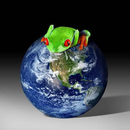 eyeing: Frog on Earth