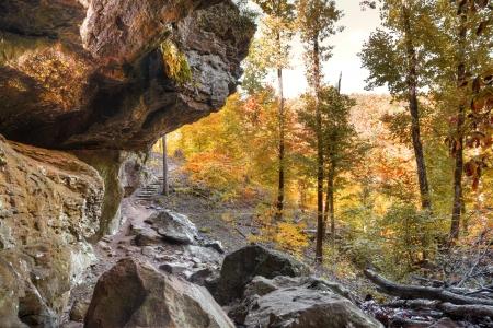 Autumn colors shine along a trail in Arkansas
