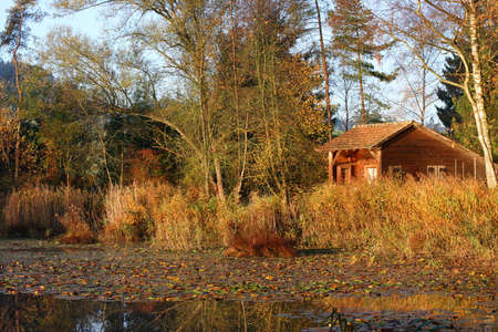 boathouse: Boathouse in the reed