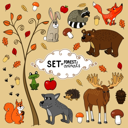 Autumn north forest animals set vector illustration Vector