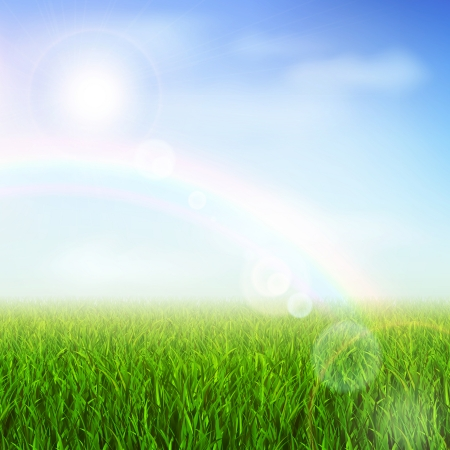 verdure: Field or meadow with green grass and rainbow vector illustration Illustration