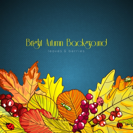 Bright autumn background poster with leaves and berries illustration Vector