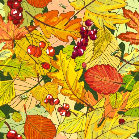 cooper: Autumn background with fallen leaves and berries vector illustration Illustration