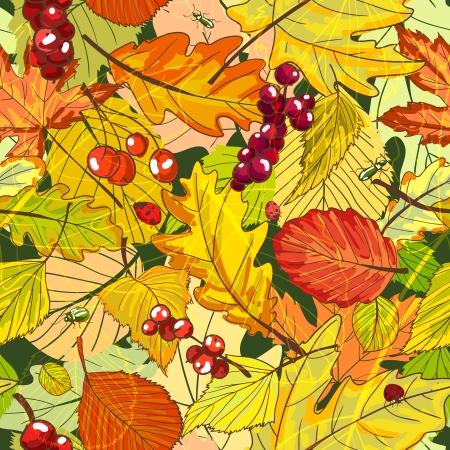 hintergrund herbst: Herbst-Hintergrund mit Laub und Beeren Vektor-Illustration