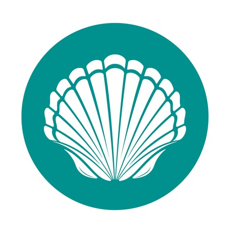scallop shell: Scallop sea shell symbol vector illustration