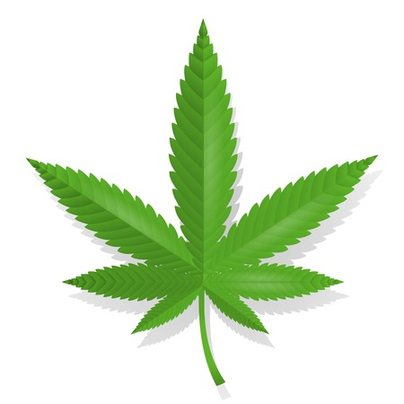 Cannabis feuille icône illustration vectorielle isolé Illustration