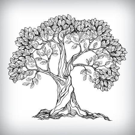 ilustracion: Dibujado a mano aislado símbolo del árbol ilustración vectorial Vectores