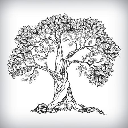 fa: Kézzel készített fa szimbólum elszigetelt vektoros illusztráció