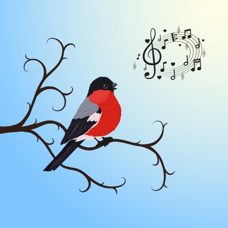 Singing bullfinch bird on a tree branch vector illustration Vector