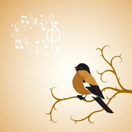 song bird: Winter bullfinch bird on a tree branch illustration