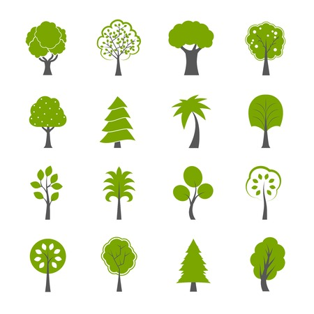 自然の緑の木々 のアイコンのコレクション セット松 fir カシおよび他の木の隔離された図