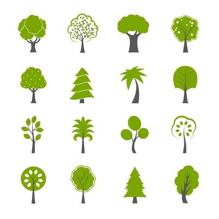 자연의 녹색 나무 아이콘의 컬렉션은 소나무 전나무 참나무와 다른 나무 고립 된 그림을 설정