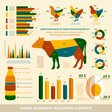 husbandry: Animal husbandry infographics flat design elements of livestock and chickens vector illustration Illustration