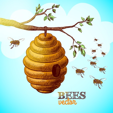 bees: Honey bees and hive on tree branch background illustration