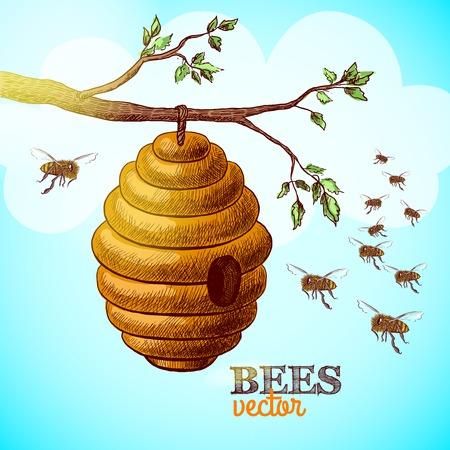colmena: Las abejas de miel y la colmena en la rama de árbol de la ilustración de fondo Vectores